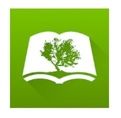 Bible by Olive Tree for Mac: How to Download & Install in Mac?